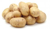 Potato growers face losses  despite bumper output