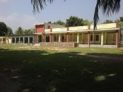 62 pry schools in Sharsha, Jhikargachha running sans head teachers