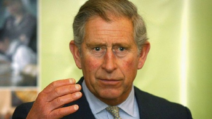 Prince Charles lobbied on climate policy after shares purchase