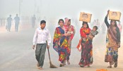 Delhi restricts vehicles  to curb pollution