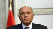 Egypt FM to tour Gulf in push for political solution