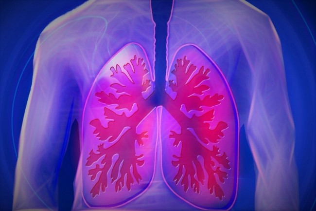 Donor lungs over age 60 safe for transplantation