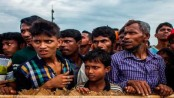 So far 5,27,597 Rohingyas registered