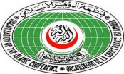 Action plan to meet water-related challenges in OIC countries approved