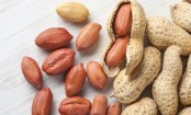 Eating pistachios, peanuts may boost mental skills, memory