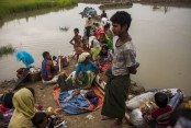 US reaffirms its support to resolve Rohingya crisis