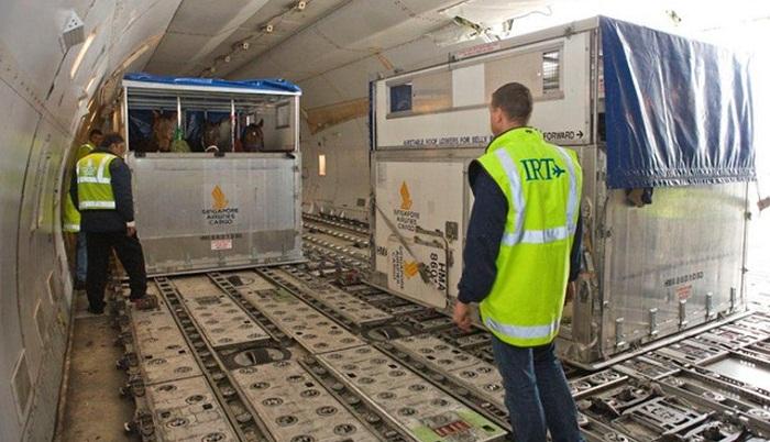 24 quarantine stations set up in ports