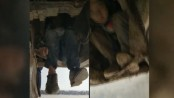 Two Chinese boys travelled 80km in bus undercarriage