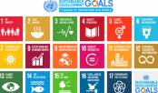 Government forms a framework to oversee SDG implementation