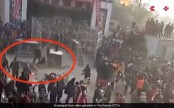 Tiger mauls two children after escaping from circus (Video)
