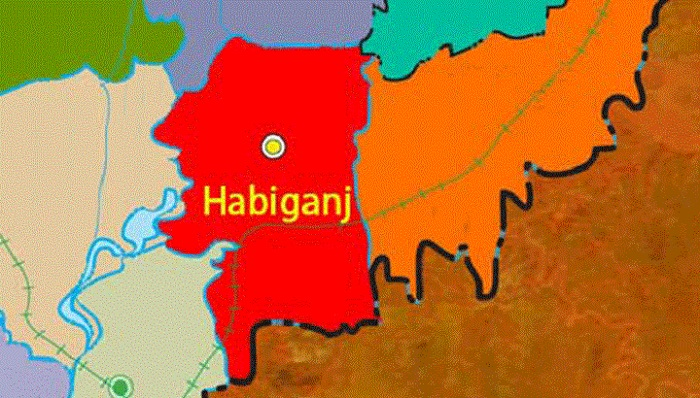 Sexagenarian man stabbed dead by son in Habiganj
