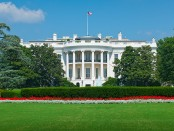 White House reportedly infested with cockroaches, mice, ants