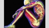 Preserving Your Bones And Joints