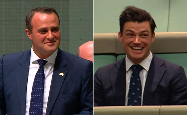 MP proposes to gay partner in Australian parliament during same-sex marriage debate (Video)