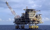 Oil prices rebound amid short-covering