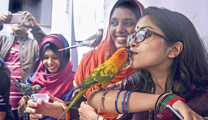 Visitors enjoy a bird fair