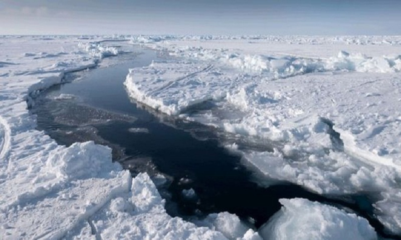 Warmer Arctic is the 'new normal'