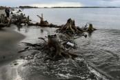 The vengeful sea devouring Albania's coast