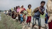 Daily Rohingya arrival rates dropped from 745 to 100: UNHCR