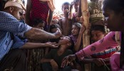 WHO releases $1.5 million for Rohingya refugees