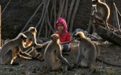 Modern-day Mowgli: Indian toddler forges bond with monkeys (Photos)