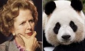 National Archives: Margaret Thatcher refused to share flight with panda