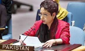 Pakistan can review cooperation with US if it is not appreciated, says Maleeha Lodhi