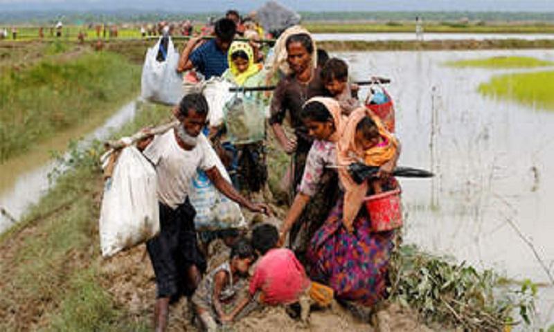 Photo exhibition on Rohingya refugees on Friday