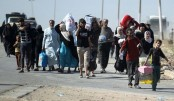 More than half of displaced Iraqi returned home: IOM