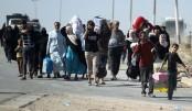 More than half of displaced Iraqi returned home: IOM