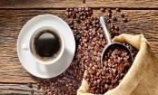 Caffeine level in blood may predict Parkinson's disease