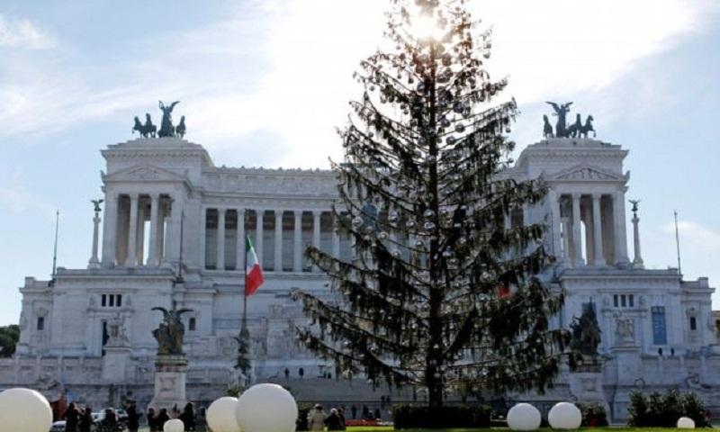 New life for Rome's 'baldy' Christmas tree Spelacchio