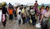 2,400 Rohingyas enter Bangladesh in December