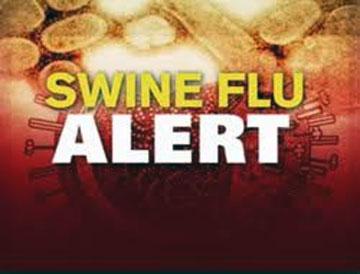 Indian capital on alert of swine flu