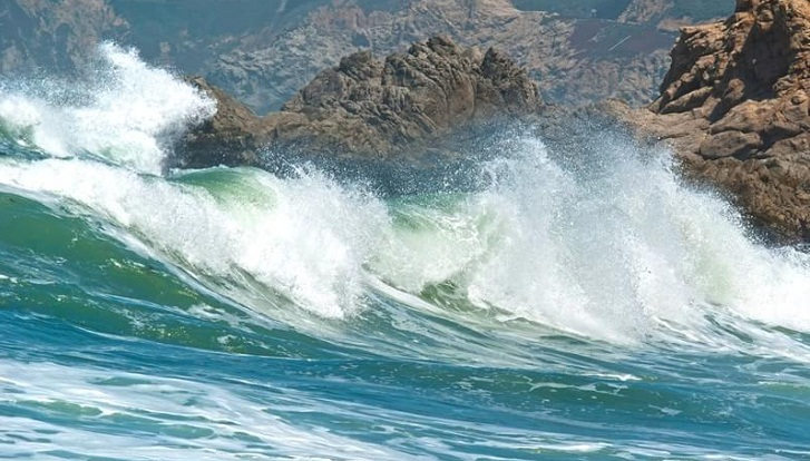 Feasibility study on power generation from sea wave is underway