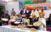 Jatiya Press Club hosts day-long Pitha Utshob