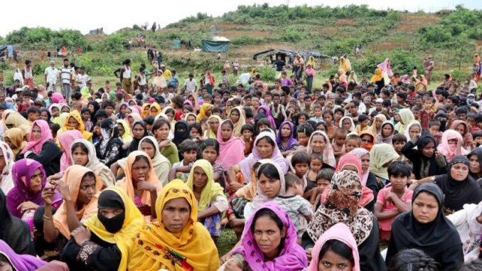 10 Rohingya's found in mass grave innocent civilians: ARSA