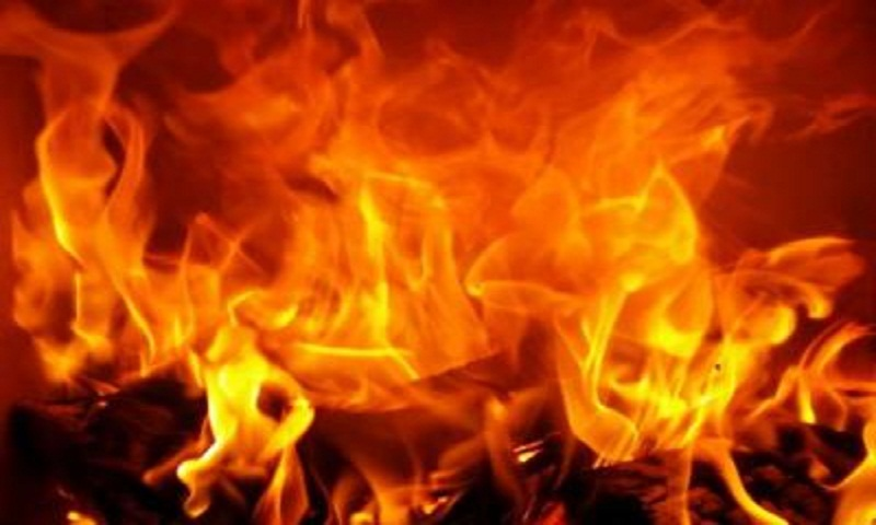 Five killed in western India fire