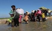 Returning Rohingya to Myanmar illegal and premature: Amnesty