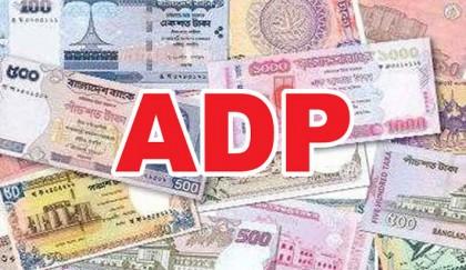Half-yearly ADP  execution falls