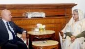 Dhaka wants peaceful solution to Rohingya crisis: PM