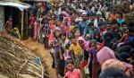 Rohingya return  begins Jan 23