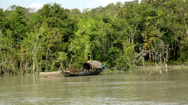 4 fishermen abducted in Sundarbans