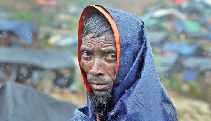 'Suspend Rohingya repatriation plan'