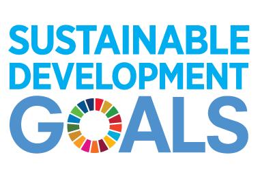 Framework to track SDG progress in place