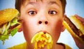 Junk food causes serious health hazard to children