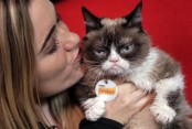 Grumpy Cat wins $710000 in US copyright case