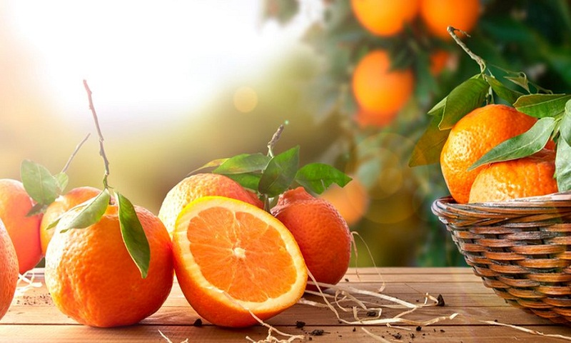 Squeeze the wealth of nutrients from oranges