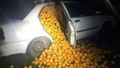 Seville orange heist: Stolen fruit spills from cars