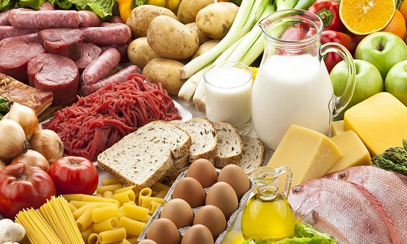 All about the protein foods